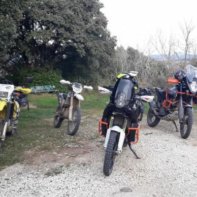 Enduro, Trail léger et Maxi Trail